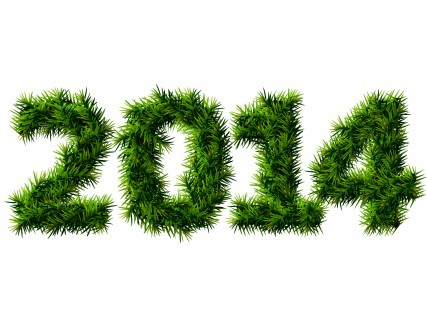 New-Year-2014-Grass-Wallpaper-HD1