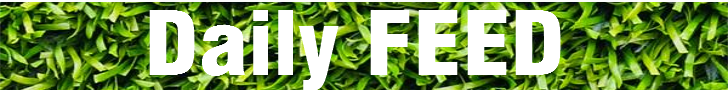 Daily FEE banner